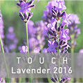 TOUCH Lavender2016