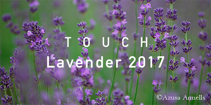 TOUCH Lavender2017